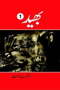 Action Adventure Novel Bhaid by MA Rahat